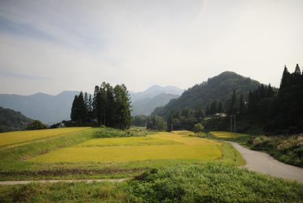小谷の風景 写真